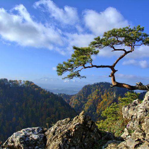 7 powodów, dla których warto odwiedzić Małopolskę