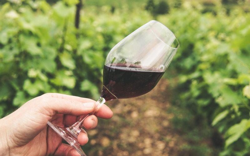 lampka czerwonego wina